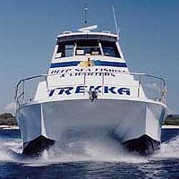Sunshine Coast Fishing Charters - Accommodation Rockhampton