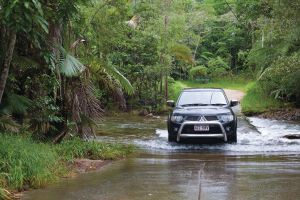 The Pioneer Valley and Eungella National Park - Accommodation Rockhampton