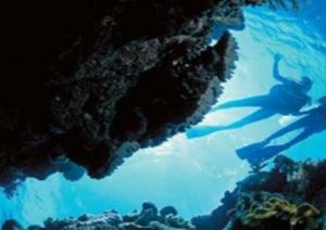 Deep Sea Divers Den - Accommodation Rockhampton